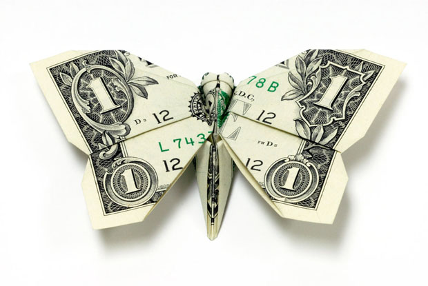 new one dollar butterfly by orudorumagi11 d4iey6k Bir Bardak 2.27$
